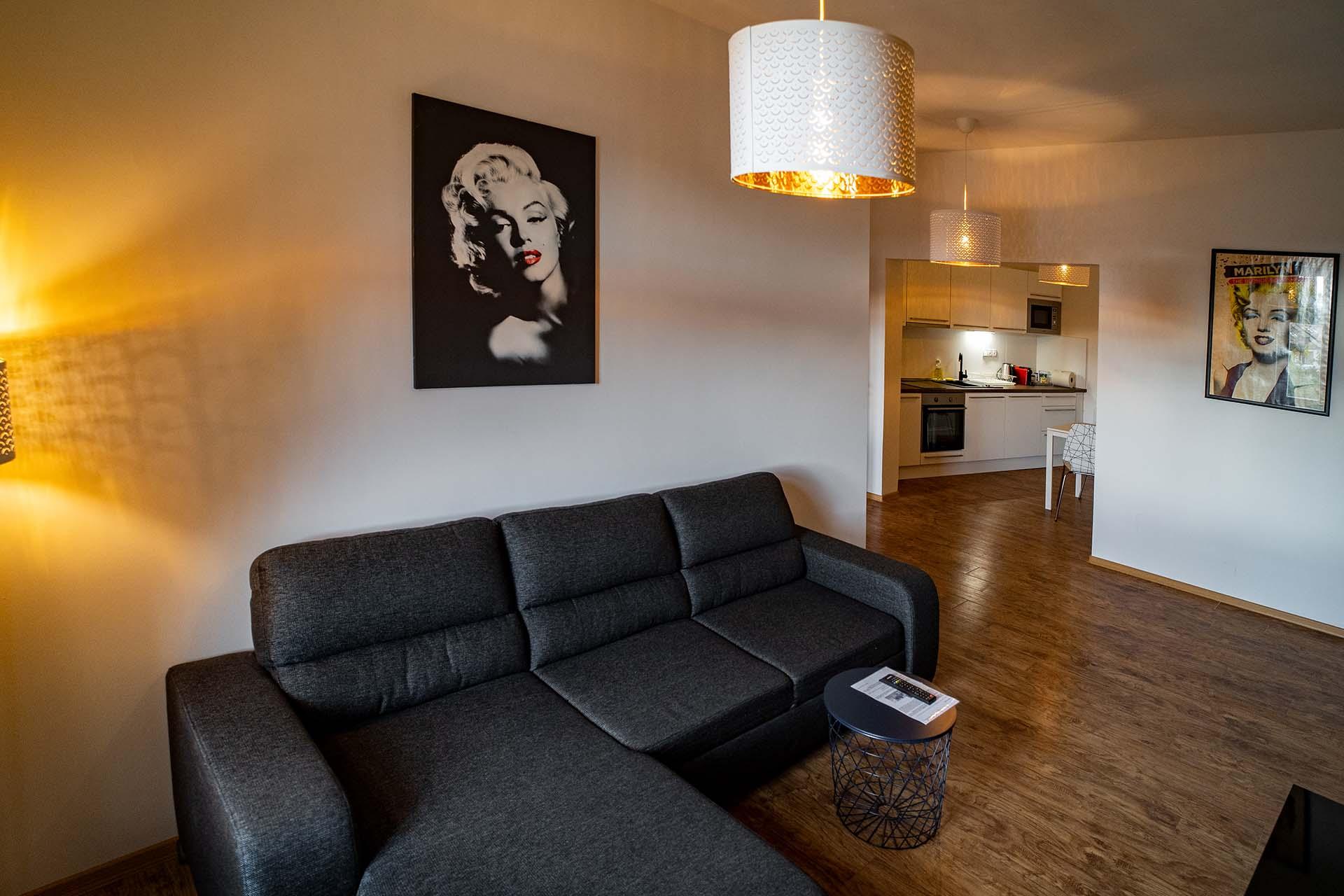 apartmany-obrazek-4